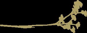 Les Maisons du Maquis Location maisons et bergeries à Bonifacio
